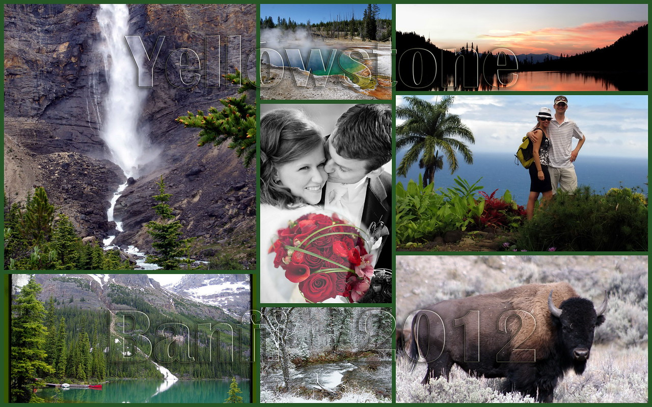 A Wedding, Banff, Yoho & Yellowstone in 2012