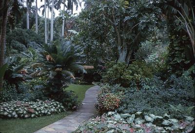Busch Gardens or Cypress Gardens?