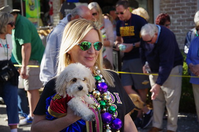 Mardi Gras for the dogs