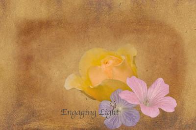 Blossom Buddies