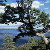 Inspiration Point - Teton National Park, WY