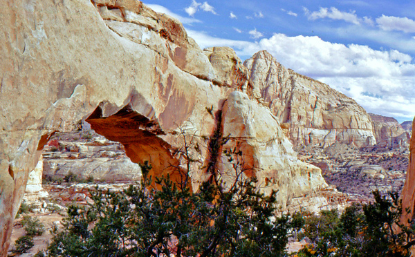 Capitol Reef National Park: Hickman Bridge