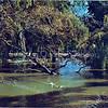 An0040 <br /> Park Rusthoff, het voormalige landgoed van de familie Charbon. Sinds 1917 eigendom van de gemeente Sassenheim en ingericht als wandelpark. Foto: 1974.<br /> Park Rusthoff, het voormalige landgoed van de familie Charbon. Sinds 1917 eigendom van de gemeente Sassenheim en ingericht als wandelpark. Foto: 1977