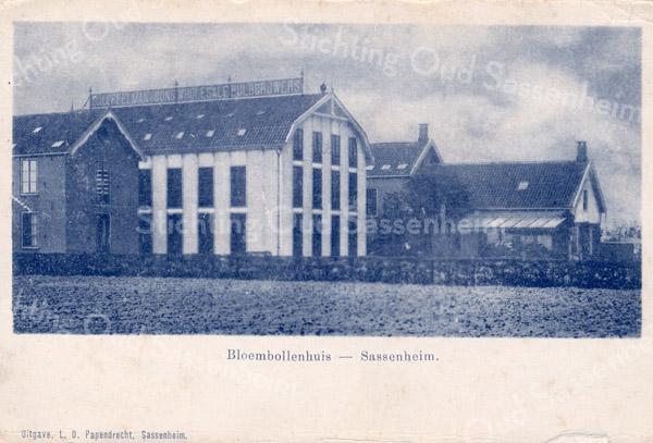 An0082 <br /> Bedrijfsgebouwen/bloembollenschuur van C.J. Speelman en Zn, te bereiken via het Speelmanlaantje tegenover de Zuiderstraat. De molenstomp van de vroegere korenmolen van Speelman stond hier dichtbij. Alles is nu verdwenen, alleen de molenstomp is blijven staan. Foto: ca jaren '20.
