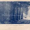 An0098 <br /> Links achter de bomen was eertijds de winkel van Van Steijn in huishoudelijke- en galanterieartikelen resp. de kantoorboekhandel van Ammerlaan gevestigd (nu videotheek). Rond 1900 was in dit pand het Rijwielen Magazijn van J.F. Uphoff en Zonen gevestigd. In de verte komt de stoomtram. Foto: ca 1900.