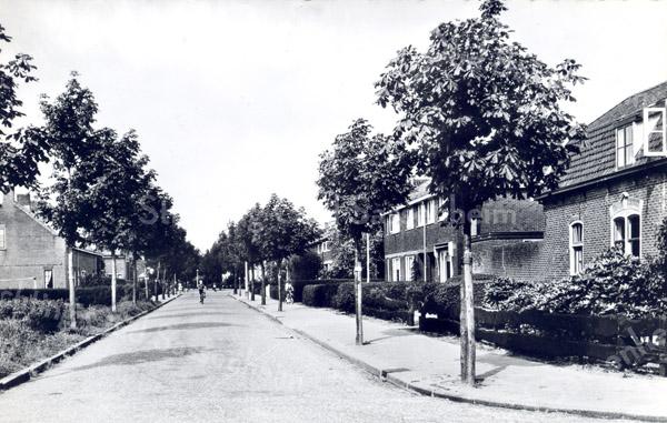 An0005 <br /> Rusthofflaan gezien in noordelijke richting vanaf kruispunt Menneweg. Rechts het voormalige woonhuis van de familie Meeuwissen. Foto: begin jaren '60.