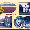 An0045 <br /> Compilatiekaart. Links boven: bollenvelden. Rechts boven: Huis ter Leede. Links onder: Hoofdstraat aan de oostelijke kant van het centrum. Rechts onder: kunstwerk van Frans van der Veld, voorstellende een werkman in een bollenkwekerij en het schaakbord in het park Rusthoff. Foto: begin jaren '80.
