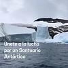 Javier Bardem, firma para proteger el océano Antártico