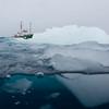 Arctic Sunrise in the Antarctic