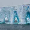 Iceberg, L&R Rothstein, 3/18/16