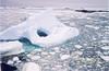 Sea ice (2)