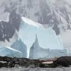 Penguins, icebergs, mountain!