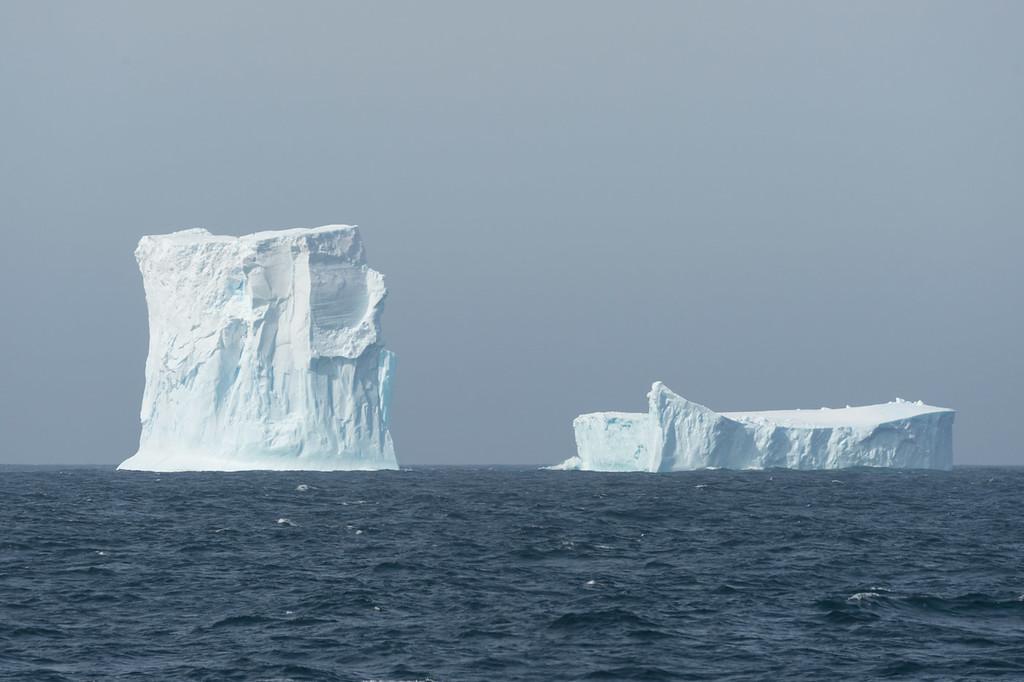 Iceberg, Scotia Sea