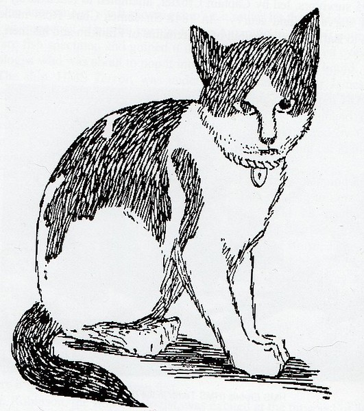 Nansen the cat. Taken on the Belgica Expedition. Drawing by Johan Koren, a Norwegian on the expedition. Source: Wikipedia.
