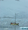You HAVE to wonder. Sailing Antartica