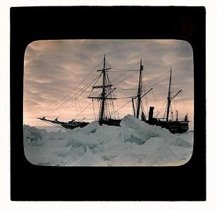 Antarcticana at Auction