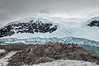 Gentoo-penguin-rookery-with-a-nice-view,-Neko-Harbour -Antarctic-Peninsula