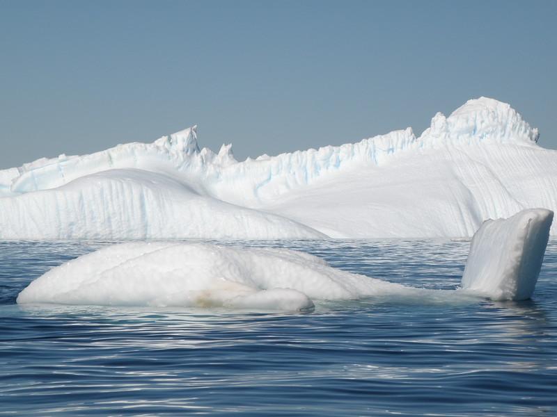 Whale iceberg