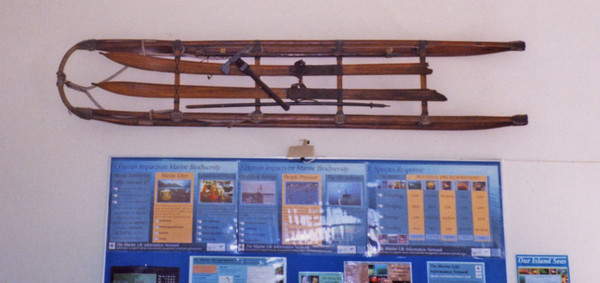 Antarctic Skis and Sledges