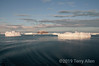 Rosamel-Island-with-icebergs,-Antarctic Sound