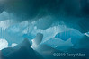 Blue-iceberg-2,-Wedell-Sea