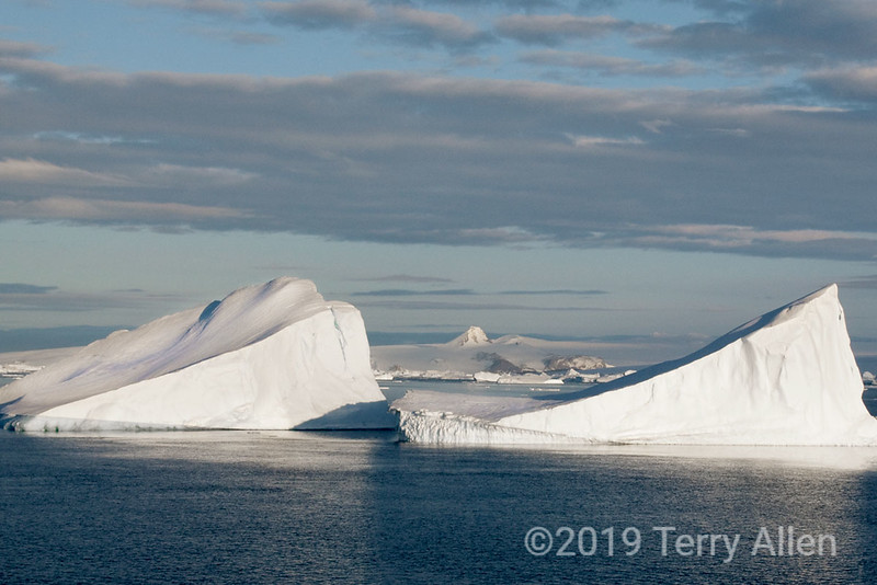 Joinville-Island-Mt-Tholus-icebergs,-Antarctic-Sound