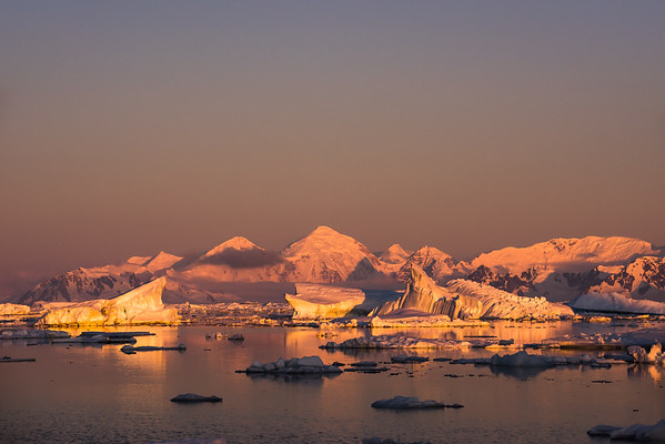 Icebergs under the midnight sun, Marguerite Bay, Antarctica