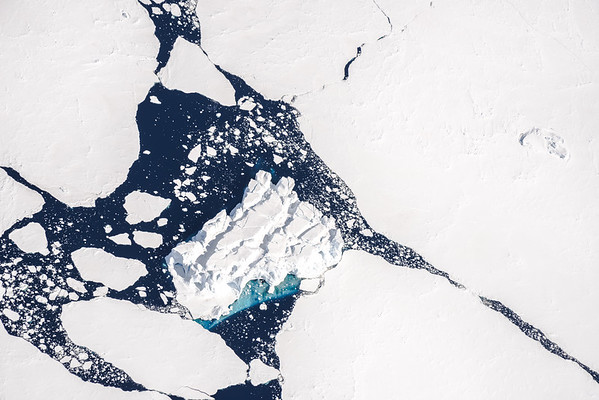 Ice floes in Marguerite Bay, Antarctica