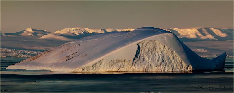 Penguin Hills