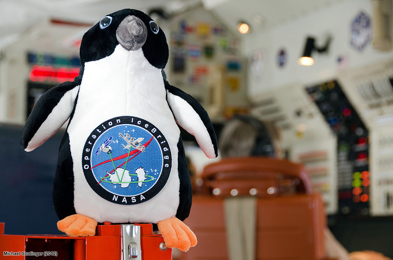 The IceBridge mascot overseeing scientific data collection on a DC-8 mission over Thwaites Glacier, Antarctica.