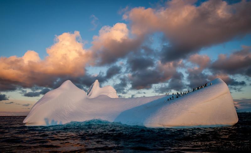 Antarctica 2014