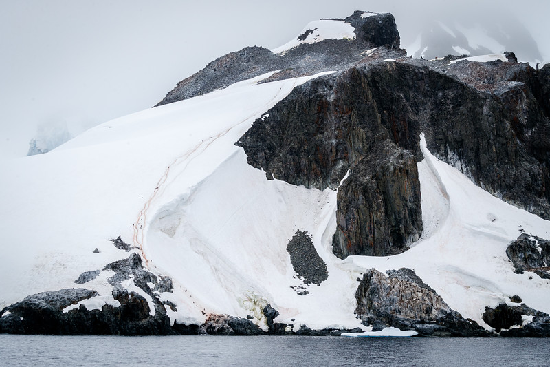 Penguins follow highways up to their colonies, here a Chinstrap Penguin colony