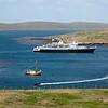 Clipper Adventurer landing, West Point Island, Falklands