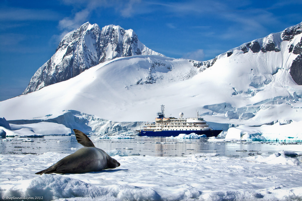 Unique cruises antarctica