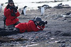 "Photo Courtesy of the <A HREF=""http://www.antarctic.cl/"" TARGET=""NEWWIN"">Antarctic Dream</A>"
