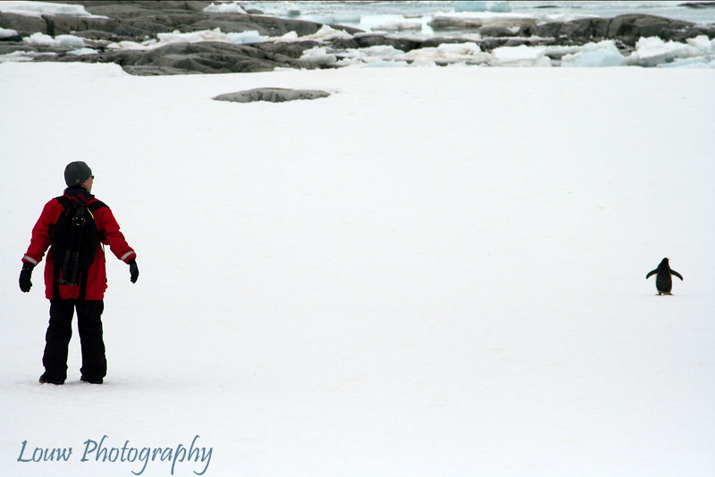 Andrew mimicking Gentoo penguin, Petermann Island, Antarctica