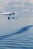 CRay-Antarctica-3255