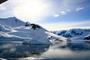 CRay-Antarctica-7011