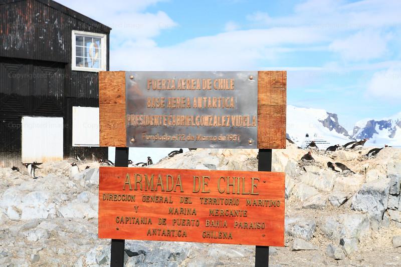 CRay-Antarctica-7222