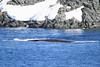 CRay-Antarctica-3102