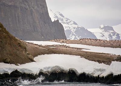 Antarctica - Half Moon AM