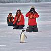 Antarctica - Ice Walk 021_2_DxO