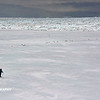 Antarctica - Ice Walk 005_2_DxO