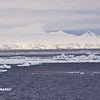 Morning Icebergs 12-12 - _006