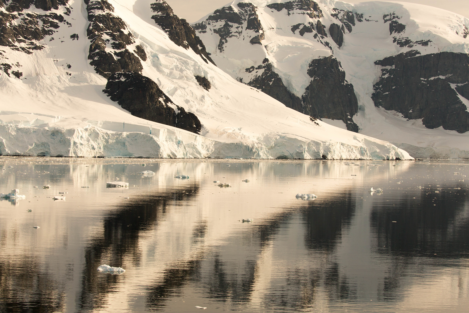 Photographing in Neumayer Channel is part of an Antarctica cruise experience.