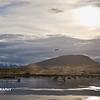 Ushuaia - _010