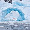 Antarctica - Zodiac Tour 12-13 - _030