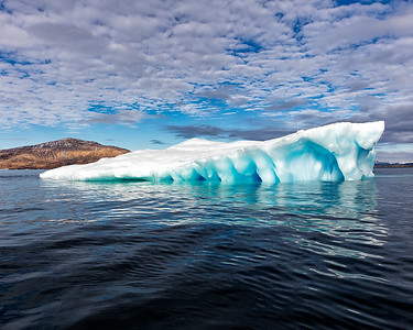 Beautiful icebergs abound
