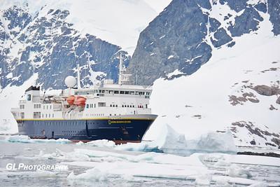 Antarctica - Cuverville Island