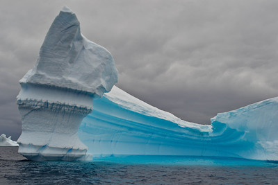 Icebergs in Pleneau